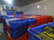 建50吨蔬菜冷库需要多少钱