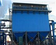 天意德 30噸鍋爐除塵器優勢多 品質高
