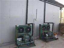 夏季500噸冷庫造價多少錢?