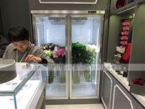 廠家供應雙門鮮花柜市場報價是多少