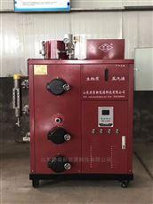 DS-300不锈钢免检生物质蒸汽发生器