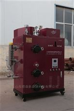 DS-100免检生物质蒸汽发生器