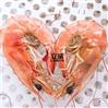 中型大虾微波烘烤设备生厂家