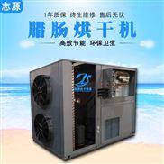 上下循环风腊肠热风循环烘箱烘干机故障率低
