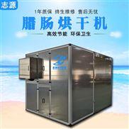 智能运行腊肠热风循环烘箱占地面积小烘干机