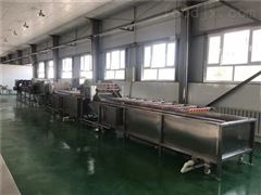 SDN-800大型山野菜加工生产线