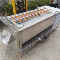 SDN-1500白萝卜清洗机