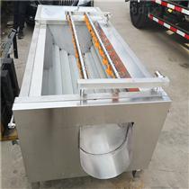 SDN-1500土豆清洗机