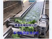 净菜加工线 果蔬清洗设备 蔬菜配送线