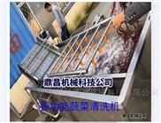 水果清洗機型號 葉菜加工設備 凈菜流水線