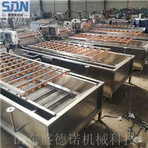 SDN-800山野菜脱水生产线