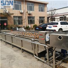 SDN-600新疆桑葚清洗机