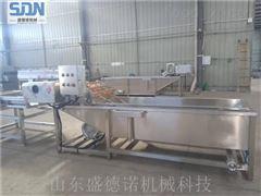 SDN-600柳蒿芽山野菜清洗机
