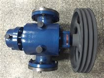 廠家直銷不繡鋼無泄露高粘度轉子泵 羅茨泵