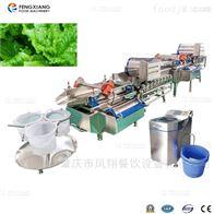 xwa-1300连续式涡流洗菜机