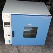 廠家打造鼓風干燥箱DHG-9023A型