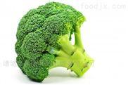 蔬菜清洗機-食品加工流水線設備