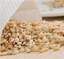 面食生產加工用DL3000單螺桿膨化機  食品