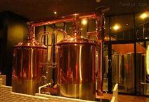 KTV、酒吧、自助餐厅精酿啤酒设备