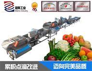 水果蔬菜涡流去污自动沥水设备