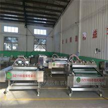 DZ-1100链条式水果蔬菜连续包装封口机 抽真空设备