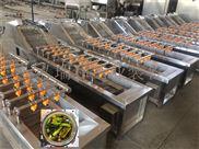 果品蔬菜清洗设备-果蔬处理机-毛豆净菜机