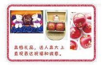 四川水果印刷机 大凉山盐源圣诞苹果印字机