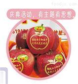 陕西延安西安小型苹果表面祝福语印字机