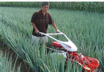 罗宾品牌发动机开沟培土机