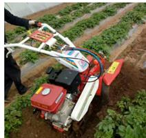 土豆專用開溝培土機