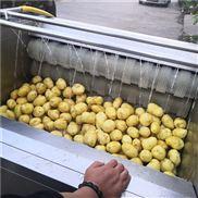 土豆去皮清洗机毛辊去皮