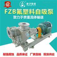 FZB型氟塑料自吸泵耐腐蚀污水泵耐酸碱泵