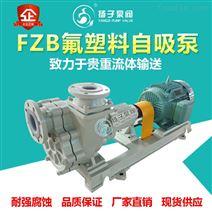 FZB型氟塑料自吸泵耐腐蝕污水泵耐酸堿泵