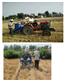玉米小區播種機兩行條播機
