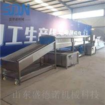 SDN-1000莲藕喷淋清洗机
