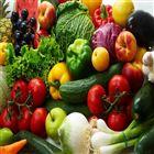 果蔬加工设备-美康可加工定制蔬菜清洗机