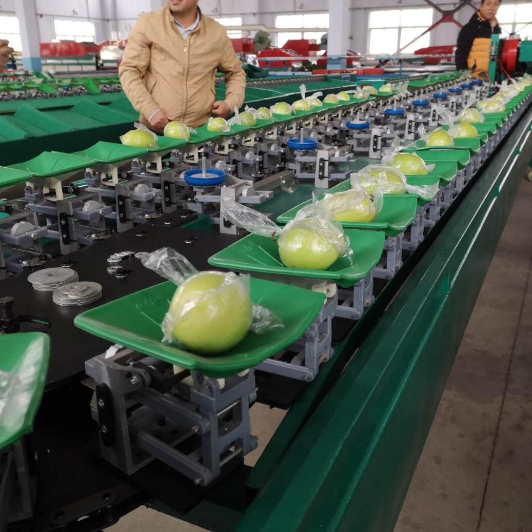分选青枣的机器 贺州大青枣全自动分选机