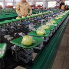 XGJ-SZZ分选青枣的机器 贺州大青枣全自动分选机