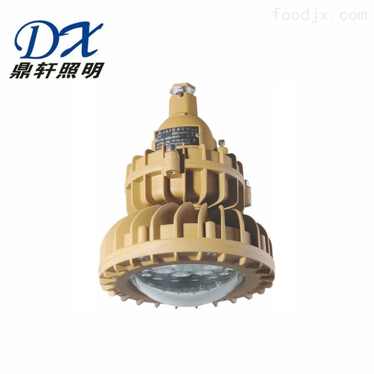 RLB153-20/30/40WLED防爆泛光灯
