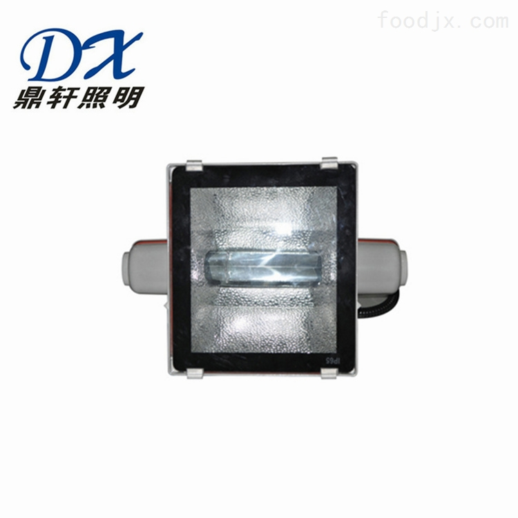 生产厂家LNTC9251-250W高效投光灯
