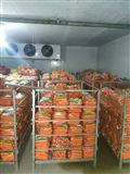 农产品交易市场冷库建设需要多少钱?
