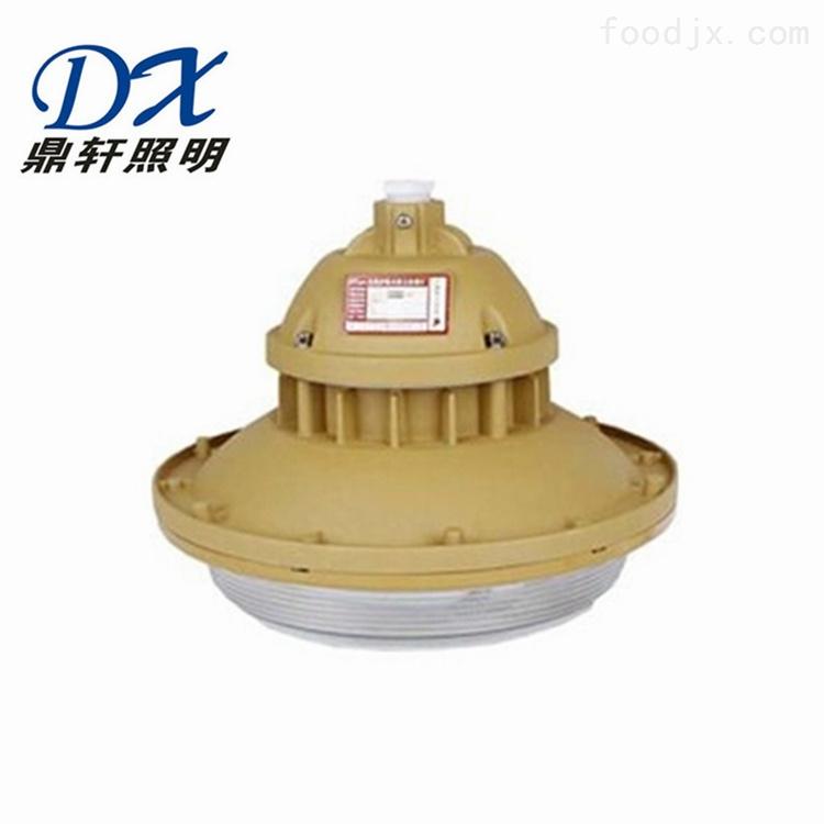 免维护防水防尘防腐泛光灯NFC2060-40W价格
