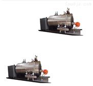 燃气蒸汽锅炉子
