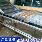 气泡清洗机-食品机械生产厂家价格