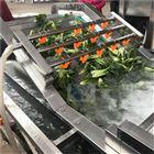 小根蒜气泡清洗机-蔬菜清洗设备价格