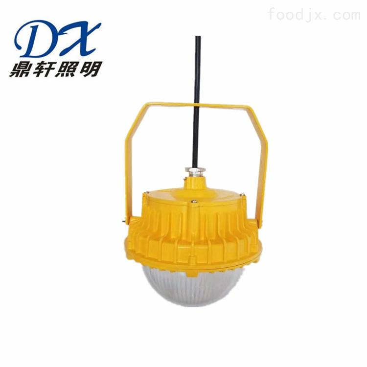 RLB157-60WLED防爆泛光灯吸顶式壁挂式