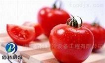 西红柿(番茄)冷库造价多少钱