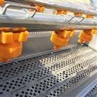 果蔬清洗输送系统 喷淋清洗机