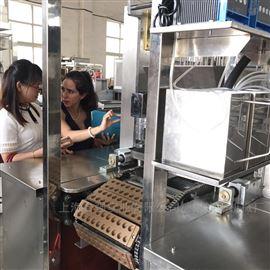 HQ-TG150型上海合强胶体软糖设备 立体糖果浇注生产线