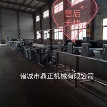 DZJX-100全自动涡流大枣气泡清洗机设备